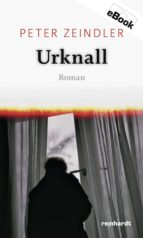 Urknall (ebook)