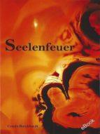 Seelenfeuer (ebook)