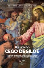 A Cura do Cego de Siloé (ebook)
