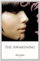 The Awakening (ebook)