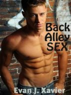 BACK ALLEY SEX