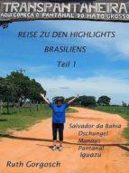REISE ZU DEN HIGHLIGHTS BRASILIENS TEIL 1