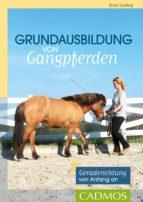 Grundausbildung von Gangpferden (ebook)