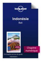 Indonésie - Bali (ebook)