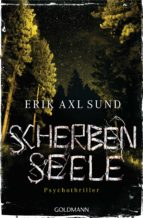 Scherbenseele (ebook)