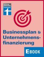 Businessplan & Unternehmensfinanzierung (ebook)