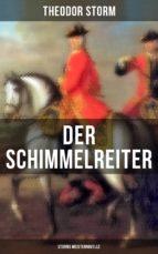 Der Schimmelreiter (Storms Meisternovelle) (ebook)