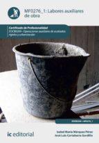 Labores auxiliares de obra. EOCB0209  (ebook)
