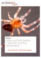 Leben auf acht Beinen (ebook)