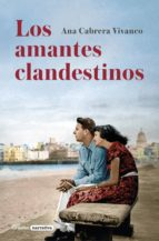 Los amantes clandestinos (ebook)