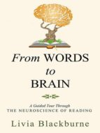 From Words to Brain (ebook)