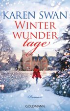 Winterwundertage (ebook)
