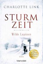 Sturmzeit - Wilde Lupinen (ebook)