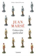 Colección particular (ebook)