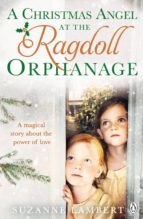 A Christmas Angel at the Ragdoll Orphanage (eBook)