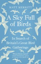 A Sky Full of Birds (eBook)