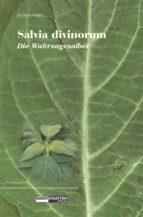 Salvia Divinorum - Die Wahrsagesalbei (ebook)