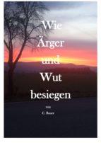 Wie Ärger und Wut besiegen (ebook)