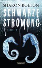 Schwarze Strömung - Lacey Flint 4 (ebook)