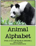 Animal Alphabet (ebook)
