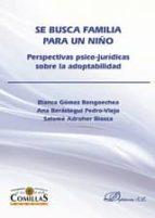 SE BUSCA FAMILIA PARA UN NIÑO (ebook)
