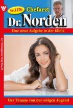 Chefarzt Dr. Norden 1126 – Arztroman (ebook)