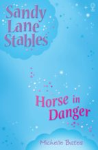 Horse In Danger (ebook)