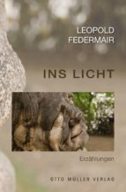 Ins Licht (ebook)