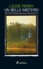 Un bello misterio (ebook)