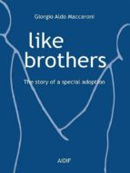 Like Brothers - The story of a special adoption (ebook)