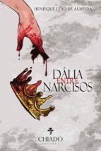 DÁLIA ENTRE NARCISOS