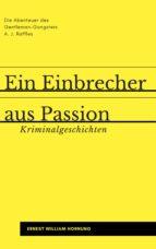 Ein Einbrecher aus Passion (ebook)