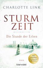 Sturmzeit - Die Stunde der Erben (ebook)