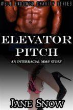 Elevator Pitch (Interracial Black MM/White F Erotic Story) (ebook)