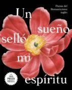 Un sueño selló mi espíritu (Flash Poesía) (ebook)
