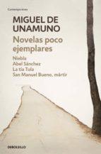 Novelas poco ejemplares (ebook)