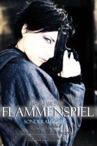 Flammenspiel - Sonderausgabe (ebook)