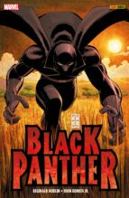 Black Panther - Wer ist Black Panther? (ebook)