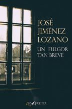Un fulgor tan breve (ebook)
