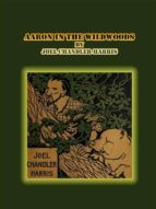 Aaron in the Wildwoods (ebook)
