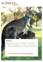 "Huckepack ""Down under"" (ebook)"