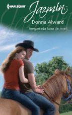 Inesperada luna de miel (ebook)