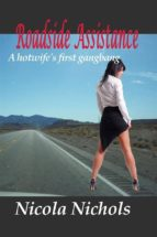 Roadside Assistance (ebook)