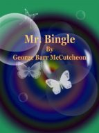 Mr. Bingle (ebook)
