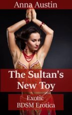 The Sultan's New Toy (ebook)