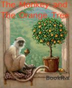 THE MONKEY AND THE ORANGE TREE