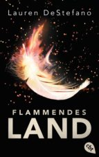 Flammendes Land (ebook)