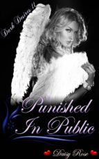Punished In Public (ebook)