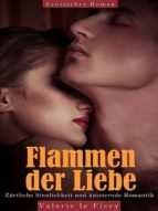 Flammen der Liebe (ebook)