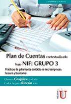 Plan de Cuentas bajo NIF: Grupo 3 (ebook)